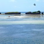 vista verso la barriera corallina