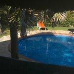 pool /yard