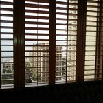Shutters with a view
