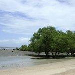 Praia do Magalhães com a maré seca.