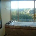 Glory Dawn tree-top unit jacuuzi/spa bath with a wow view!