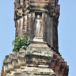 Small Buddha on the top of the shrine