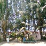 Towards Beach