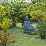 gardens of Isla Verde