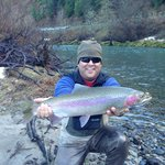 Steelhead caught just downstream from cabin!