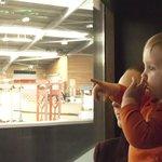 children enjoy the horses