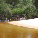 Here is what the canoe trail span of Blackwater actually looks like!