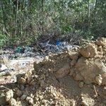 the dump called Canoe Bay Beach Resort