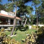 Foto de Hotel Verde Pinho