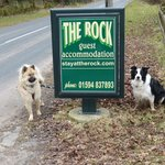 Our 2 pooches loved staying at the rock