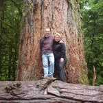 40 minute drive to ancient forests of Cathedral Grove at McMillan Provincial Park