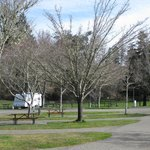 Not busy in February - Benbow RV Resort