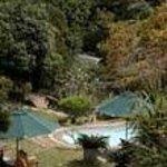 wonderful pool overlooking the beach