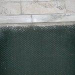 carpet and bathroom doorway