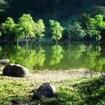 still lake water will greet you at the Balinsasayao Twin Lake Sibulan Negros Occidental..just a