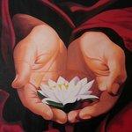 lotus spa is divine