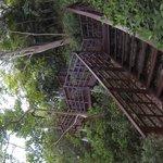 die Treppen zur Pool Villa