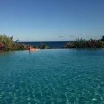 infinity pool from sunbathing area