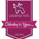 <celebrating 20 Years