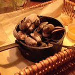 Bucket of steamed clams YUM!!