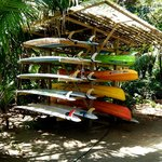 Selection of surf boards and kayaks for rent