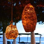 lamps hanging from trees