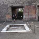 House of Venus in the Shell, Ancient Pompeii
