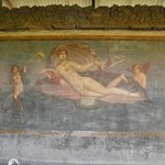 House of Venus in the Shell, Ancient Pompeii - Venus frescoe, copy