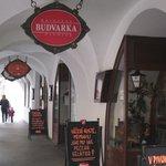 Budvarka의 사진