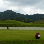 the tee boxes are marked with coconuts. very cool
