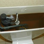 Commode with brown water