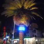 Racecentre  |  26 Orchid Ave, Surfers Paradise, Queensland 4217, Australia