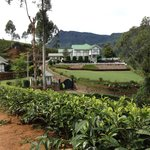 The hotel exterior surrounding by tea plantation
