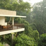 Terrace Tree Villa Views