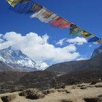 Sangrila Trail Walk Trek - One Day tour