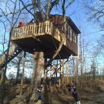 White Oak Treehouse playing on the swing