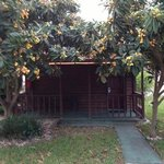 Queen Cottage with porch and beautiful fruit trees