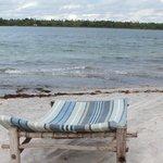 Beach front facing Chole Bay