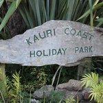 Kauri Coast Holiday Park