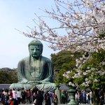 Great Buddha,Kamakura,Japan