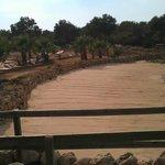 песок Клеопатры