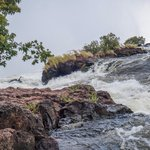 On the banks of the Zambezi leading into the falls