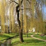 Bois d Amour, Josselin