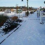Snowy Ilwaco Marina.