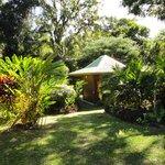 Vue bungalow Bambou (le notre !)