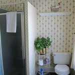 Blue bonnet bathroom
