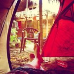 Camping Iguana Foto