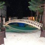 the pool bridge