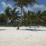 My spot under the shade on the secret beach
