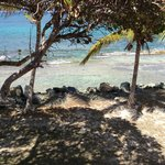 Beach/reef